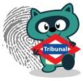 Otto_por_tribunal